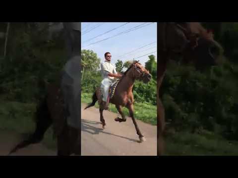Horse Name :Goldy ,Jockey:Zabir Mahida,Horse Raval Chal