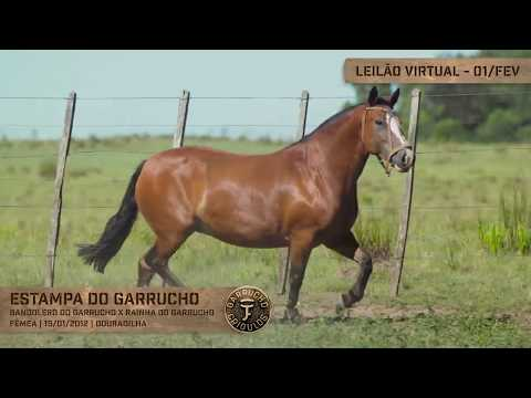 Lote 09 - Estampa do Garrucho