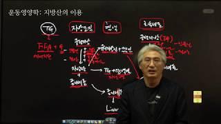 #112 운동영양학, 지방(지방산)의 이용(동신대 운동…
