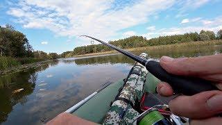 С Таким Окунем и Щука не нужна Рыбалка на спиннинг