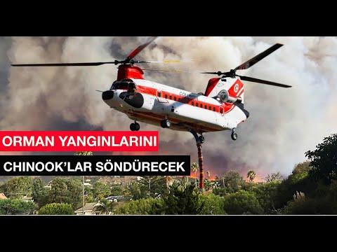 Orman Yangınlarını Chinook helikopterleri söndürecek
