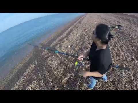 Mackerel Mayhem Montage - Mackerel Fishing At Chesil Beach