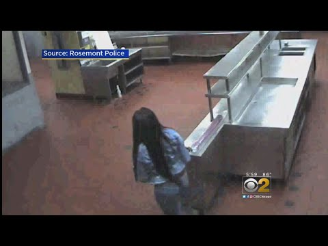 Video Excerpts Released In Hotel-Freezer Death