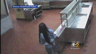 Video Excerpts Released In Hotel-Freezer Death