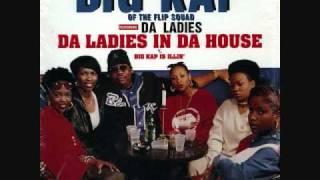 Big Kap feat. Lauryn Hill, Bahamadia, Precise, Treep & Uneek -- Da Ladies In Da House instrumental