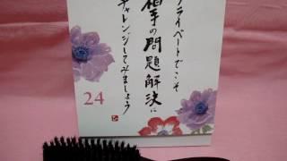 君島十和子、木村佳乃、紗栄子、セレブが愛用してるメイソンピアソンが欲しい! 君島十和子 検索動画 24