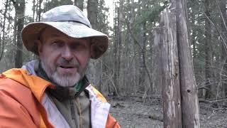 Стульчик Противотанковый Ёж (лесной стульчик без веревок)