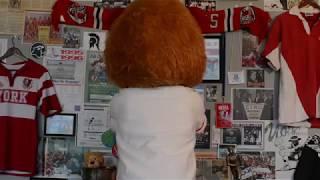 York Lions | A new era of Pride - Teaser 3