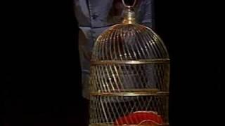 The Monty Python Dead Parrot Sketch - 1989 version!