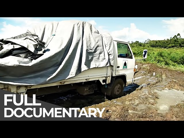 Deadliest Roads | Suriname | Free Documentary