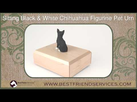 Sitting Black & White Chihuahua Figurine Pet Urn