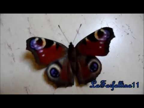Das Tagpfauenauge - Aglais io -  Erwacht aus dem Winterschlaf