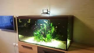 Бесшумная аэрация аквариума. Часть 2