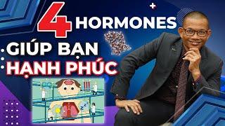 4 hormones giúp bạn luôn vui vẻ lạc quan, hạnh phúc trong cuộc sống | Phạm Thành Long