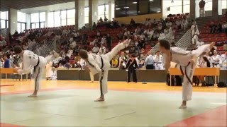 Hapkido Mix (This is Hapkido) 1 of 2