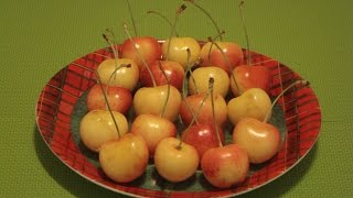 Rainier Cherries How Eat Rainier Cherries