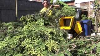 The real deal!  Fastest wood chipper by Haecksler. And how to earn more by working less.