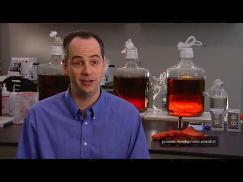 Process Development Scientist