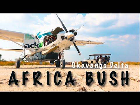 Africa Bush flying // 2020 Bush Pilot exploring the Botswana Okavango Delta.  Wilderness flying fun.