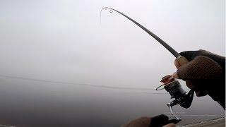 Ловля пассивного судака с берега Рыбалка 2019 Спиннинг для джига Судак
