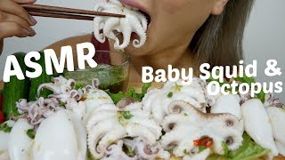 Baby Squid & Baby Octopus  | ASMR Relaxing Eating Sounds | N.E Let