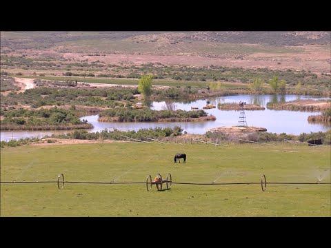 This American Land - 302 - Colorado farmers and ranchers win fight against drilling