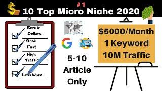 10 Micro Niche Ideas for 2020 - Earn $5000/Month - Micro Niche Blog Idea - Micro-Blogging - Part 1