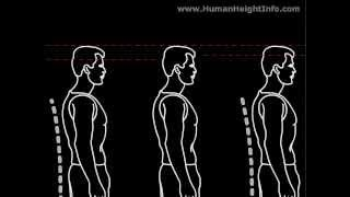 How to Grow Taller in 1 week  Natural Stretching Exercises to Increase Height for adults
