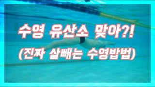 [유산소운동]진짜 살빼는 수영방법.(다이어트)