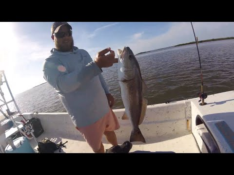 HOW TO CATCH REDFISH And SNOOK Using CUT BAIT