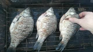 Рыба горячего копчения Коптим карася