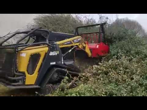 Forestry Mulching Overgrown Hedge