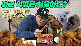 살다살다 강아지랑 치킨겸상ㅋㅋ (아빠랑 강아지 치킨먹방…