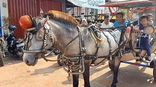 Naik Kuda Delman Di Vila Dago Pamulang