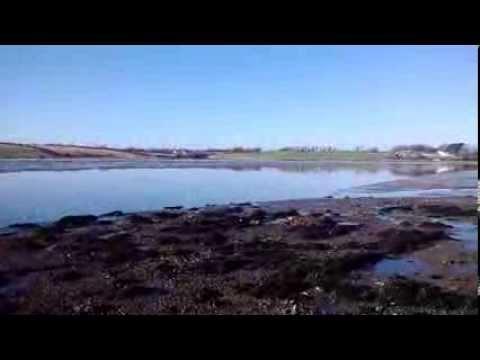 Biggest wave in Bannow Bay Wexford