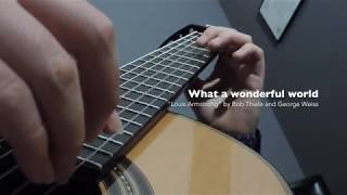 What a wonderful world - Guitar Cover - Louis Armstrong