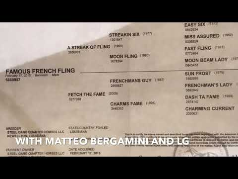 Famous French Fling With Matteo Bergamini