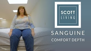 Restonic Scott Living Sanguine Euro Top Mattress Comfort Depth 2