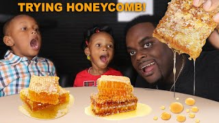 LAYLA & JUJU TRY HONEYCOMB FOR THE FIRST TIME | AMAZING REACTION