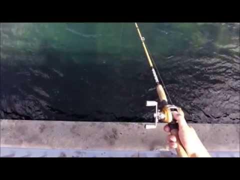 Norway fishing.Farsund