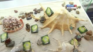 В Перми открыли крупнейший магазин серебра(, 2015-10-16T04:44:24.000Z)