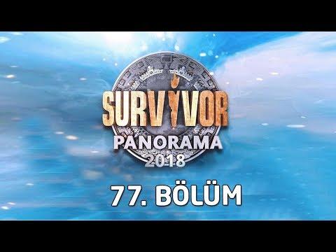 Survivor Panorama Canlı Yayını 77. Bölüm
