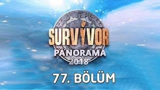 Survivor Panorama  Haftasonu Canlı Yayını