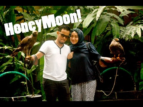 HoneyMoon January 2015