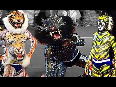 Tiger dance/ Pili Nalike -Barke Tigers Mangalore