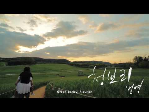 South Korea - KTO Miss Flower