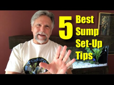 My 5 Best Sump Set-Up Tips!