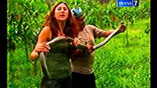 Download Video Berburu   Berburu Ular di Bukit Sina Part 1 MP3 3GP MP4