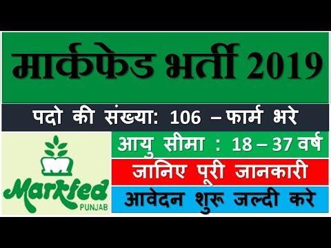 Markfed Punjab Recruitment 2019 | Assistant, Steno Typist | मार्कफेड पंजाब भर्ती