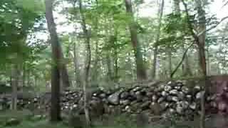 水林自然林キャンプ場@福島市